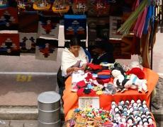 Programa de Alianzas para el desarrollo de Bolívar